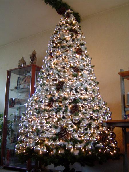 KerstForum.nl • Toon onderwerp - Alle Kerstbomen op een rij
